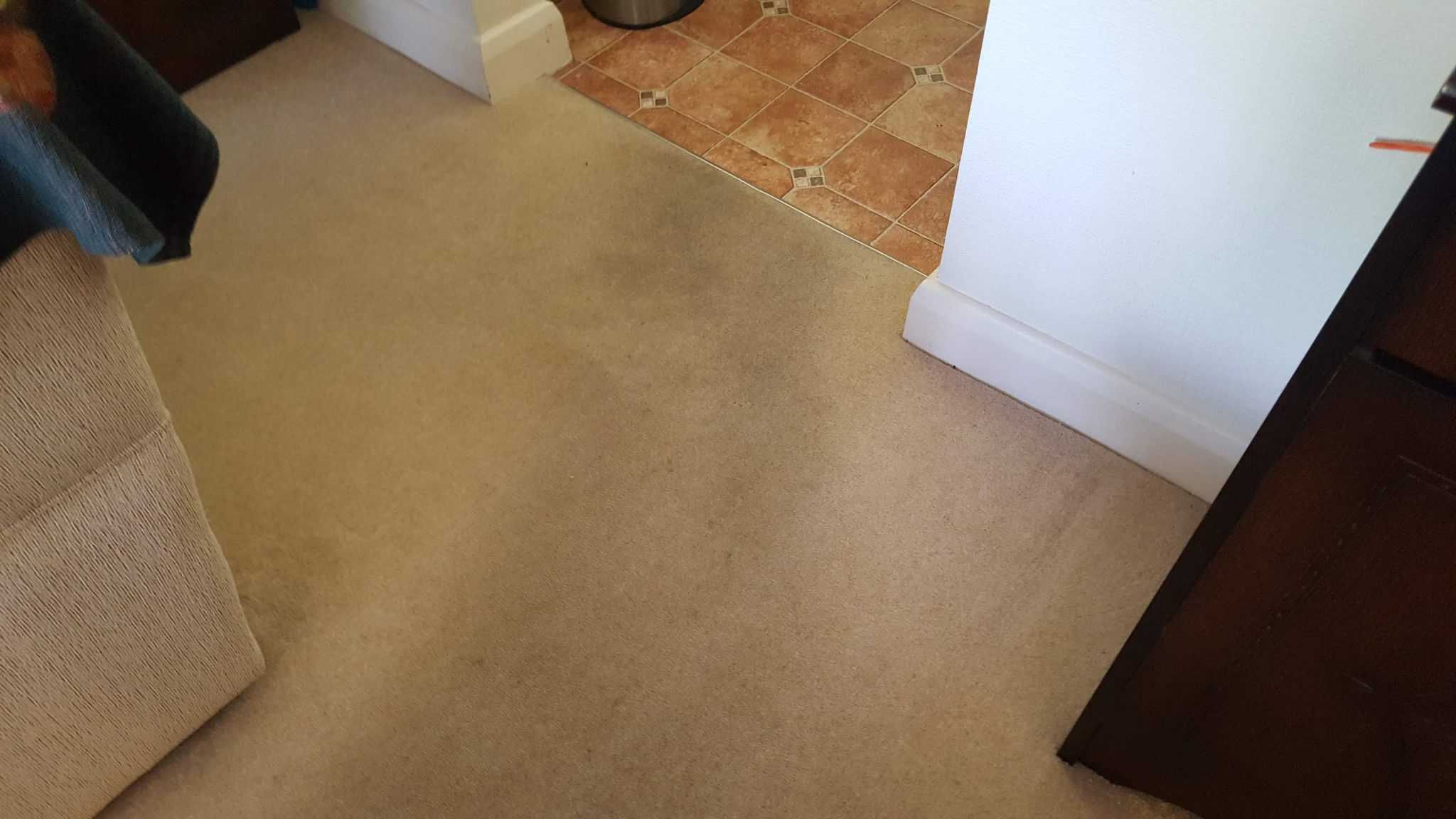 Carpet Cleaning Aldridge